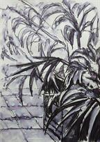 Foliage on the Roof 42cm x 29.7cm Pen & Ink on paper